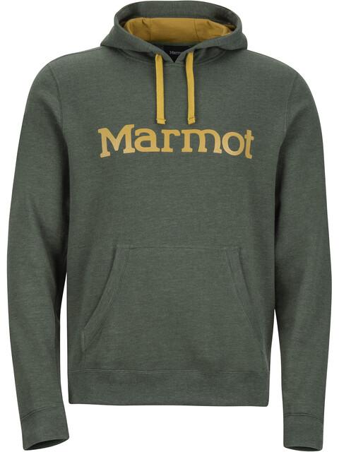 Marmot Hoody - Couche intermédiaire Homme - olive
